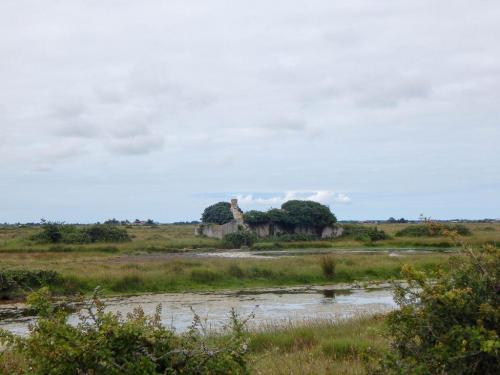Alte-ruine-in-der-Marais