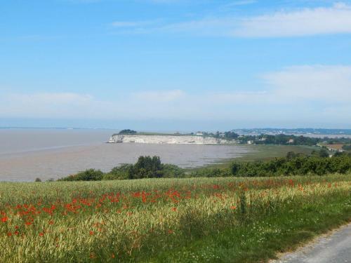Blick auf die Falaises de Caillaud