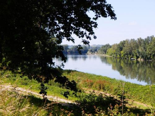 Blick auf die Garonne