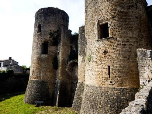 Chateau de Villandraut (Papst Clemens V) (1)