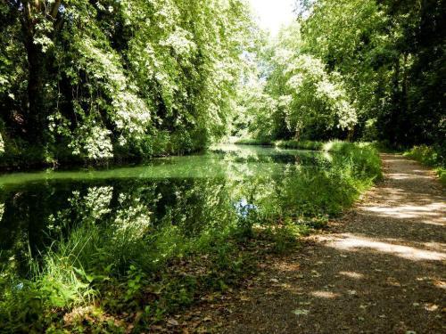 Die letzte Etappe am Kanal (1)