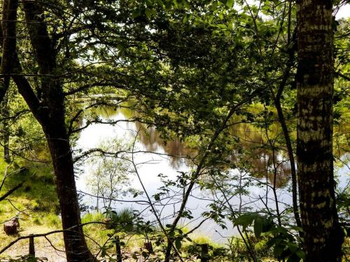 Ein kleiner Waldsee am Radwanderweg in die LesLandes (1)