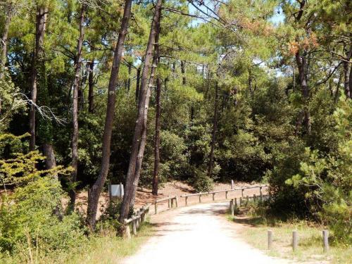 Huegeliger-aber-schoener-Radwanderweg