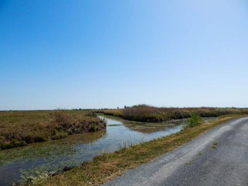 Radwanderweg durch die Marais